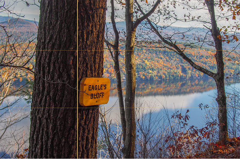 Eagles-Bluff-One-Thick-Line-01